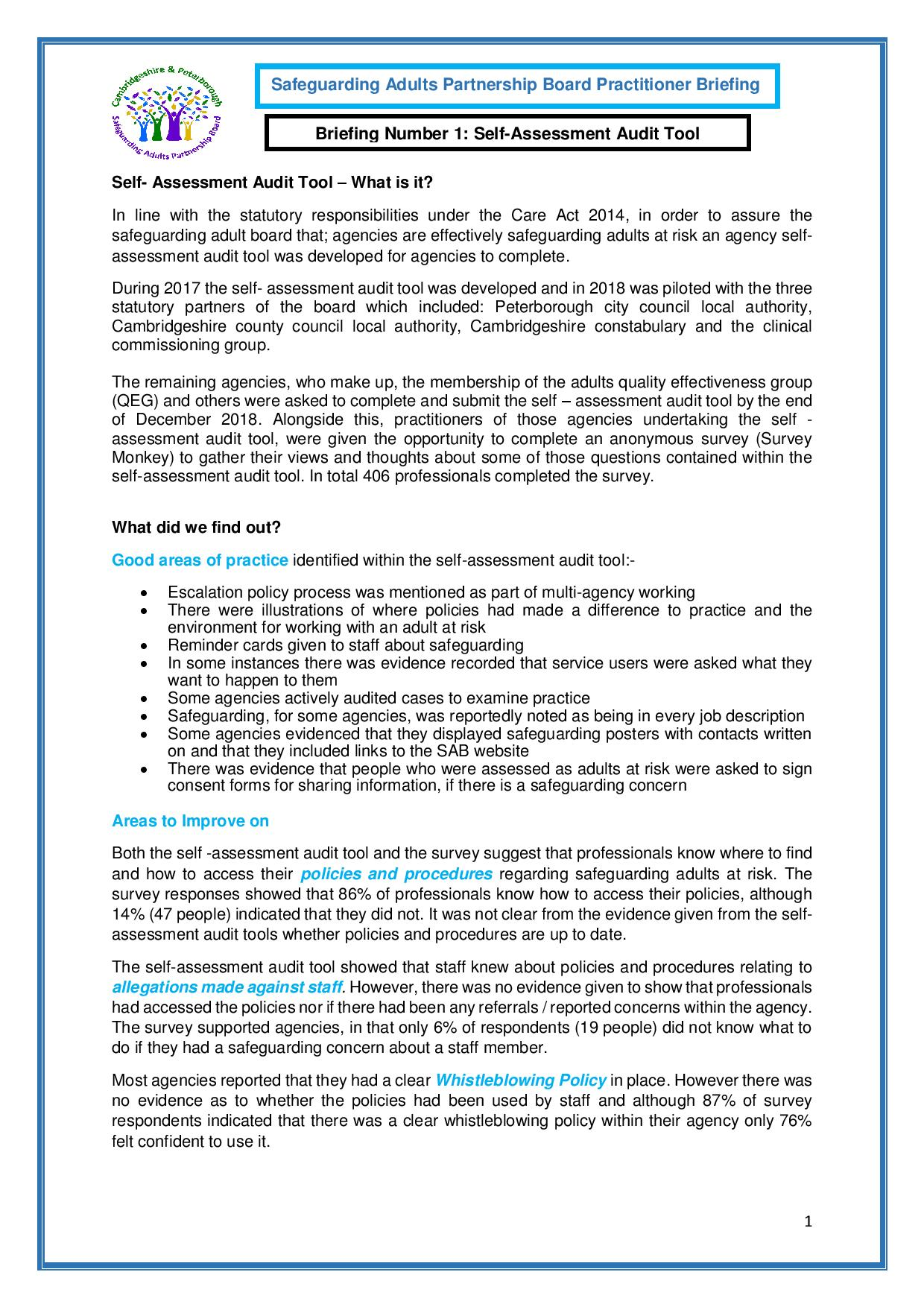 Self-Assessment Audit Tool Briefing