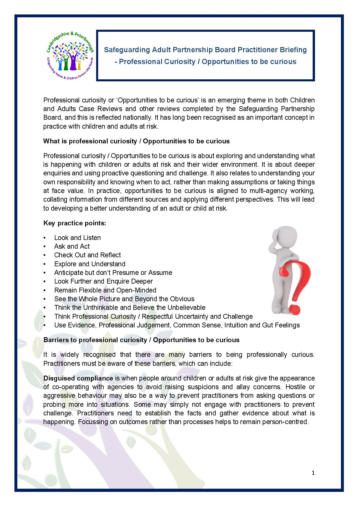 Professional Curiosity / Opportunities To Be Curious Briefing
